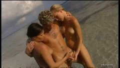 海滩 比基尼 金发女郎 褐发女郎 猛干