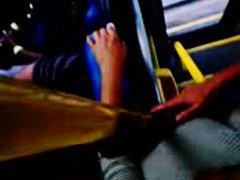 באוטובוס ציצים ציבורי