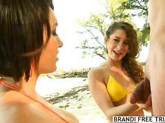 חוף ביקיני מציצות בחורה קבוצתי