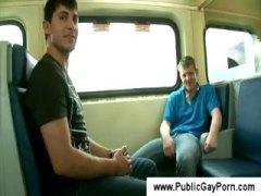 זין הומואים ציבורי ווייר מציצות