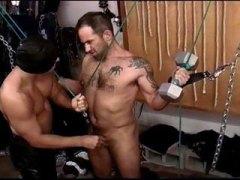 סאדו זין גדול פטיש הומואים שעירות