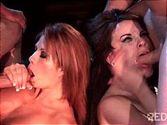 Broches Garganta Funda Masturbação Estrelas Porno Rapadas