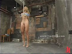 Slut is tied like a hog immobilized with hands eyes and legs fixe