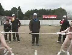אסיאתיות יפניות ציצים מבוגרות