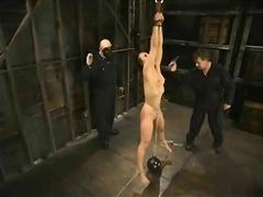 Dominació-submissió Pornstar