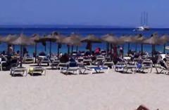 Плажа Брадавици Јавно