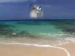 חוף אוננות ווייר