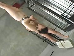Japanese bdsm 1