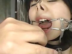 סאדו יפניות הצלפות