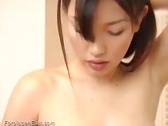 חובבניות אסיאתיות שעירות הרדקור יפניות