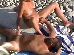 חובבניות חוף ווייר