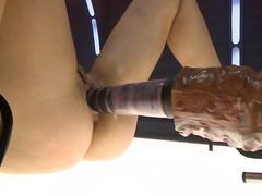 בלונדיניות מכללה פוסי מגולחות ציצים