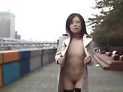 აზიელი იაპონელი საზოგადო