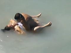 מלאות חוף ווייר