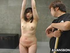 Asiàtiques Dominació-submissió Esclavitud Japoneses